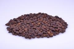 Ovale Herstellung von Kaffeebohnen lizenzfreies stockfoto
