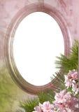 Ovales Feld mit einer Blume Stockfotografie