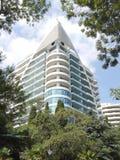 Ovanför de gröna träden och palmträden mot den blåa molniga himlen står högt en högväxt vit byggnad av en bostads- byggnad royaltyfria foton