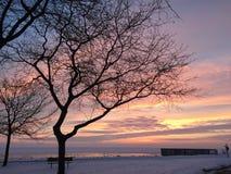 ovanför den härliga naturen för morgonen för guld för fågeloklarhetsfärger tidiga klipska stiger den angenäma tysta reflexionen h Arkivfoton
