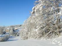 ovanför för sunsolnedgång för ljus päls röda överkanter övervintrar trees berg snow under Djupfrysta snöig träd och panorama för  Arkivfoton