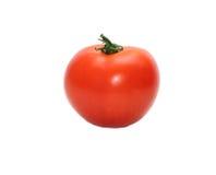 ovanför främre mogen tomatsikt Fotografering för Bildbyråer
