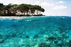 Ovanför och nedanför havsyttersida nära den tropiska östranden Royaltyfri Fotografi