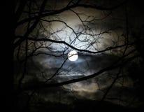 ovanför oklarhetsdatormoonen behandlade natten skystjärnor dem Royaltyfri Foto