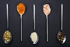 ovanför sikt Skedar med kryddor från en blandning av salta, paprika-, sesam- och solrosfrö för peppar, royaltyfri foto