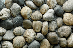 ovanför tillägg fotograferade pebblen havsseaweedvatten Havet stenar bakgrund kanjontusen dollar framför Arkivbilder