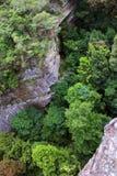 ovanför trees Arkivbild