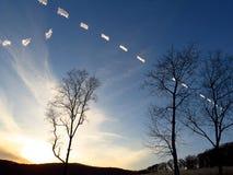 Ovanlig avbruten contrail efter flygplanet i solnedgång arkivfoton