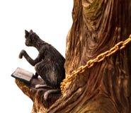 Ovanlig smart svart katt som läser en bok som sitter i ett träd isola royaltyfri foto