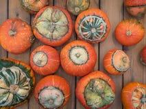 Ovanlig typ av pumpaturbansquash på en träräknare Många orange pumpa på en trätabell Pumpa för en ferie arkivfoto