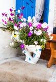 Ovanliga planters Växter för van vid lönelyft för toaletter alpina royaltyfri fotografi