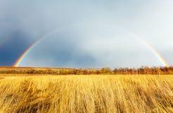 Ovannämnt lantgårdfält för härlig full regnbåge på våren royaltyfri fotografi