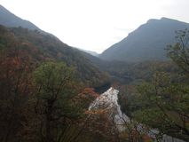 Ovcar - Kablar kanjon Royaltyfria Foton