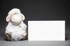 Ovejas con la tarjeta en blanco Imágenes de archivo libres de regalías