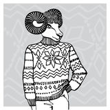 Ovejas de la historieta en suéter del telar jacquar Moda del esquema Imagen de archivo