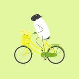 Ovejas en el  le del bicyÑ Fotografía de archivo