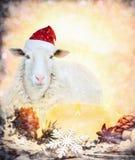 Ovejas en el sombrero de Papá Noel de la Navidad con las velas Imágenes de archivo libres de regalías