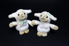 Ovejas felices de Pascua Imagen de archivo