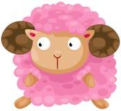 ovejas lindas Fotografía de archivo libre de regalías
