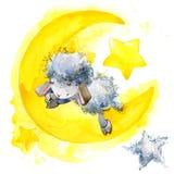 Ovejas lindas Ilustración de la acuarela Diseño de la camiseta de las ovejas Fondo de las ovejas y de las estrellas Fotos de archivo