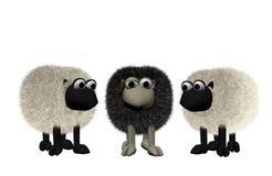 Ovejas negras entre dos ovejas blancas Imagen de archivo libre de regalías