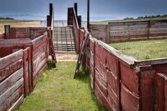 Ovejas Pen Loading Dock Imágenes de archivo libres de regalías