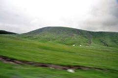 Ovejas que pastan en la montaña imagenes de archivo