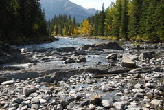 Ovejas River Valley del otoño fotografía de archivo libre de regalías