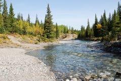 Ovejas River Valley del otoño imagen de archivo