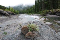 Ovejas River Valley en lluvia Fotos de archivo