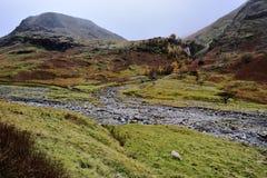 Ovejas solitarias en el valle de Seathwaite fotografía de archivo libre de regalías