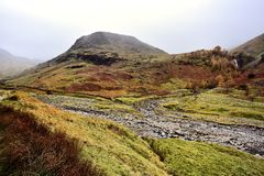Ovejas solitarias en el valle de Seathwaite imagen de archivo libre de regalías