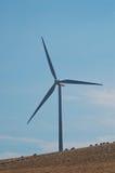 Ovejas y molino de viento imágenes de archivo libres de regalías