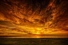 Ovejas y puesta del sol Fotografía de archivo