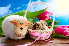 Ovejas y una cesta con los huevos de Pascua foto de archivo