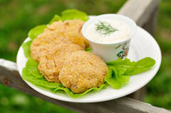 Oven baked apple chicken patties Stock Images