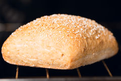 Oven baked bread macro one Royalty Free Stock Images