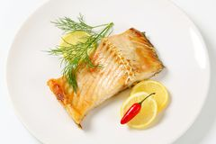 Oven baked carp fillet Royalty Free Stock Photography