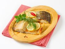 Oven baked carp fillet Stock Images
