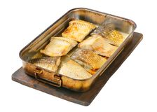 Oven baked carp fillets Stock Photos