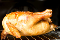 Oven baked chicken Royalty Free Stock Photography