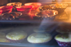 Oven Baked Muffins Royalty Free Stock Photography