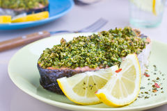 Oven baked salmon Royalty Free Stock Image