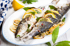 Oven-baked Sea bass. With lemon and herbs Stock Photos