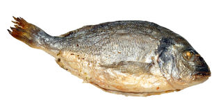 Oven Baked Sea Bream Stock Afbeeldingen
