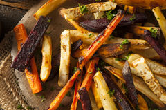 Oven Baked Vegetable Fries stock foto's