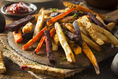 Oven Baked Vegetable Fries Royaltyfri Foto