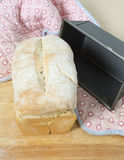 Oven fresh bread vertical Stock Photography