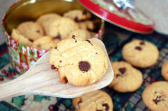 Oven Fresh Chocolate Chip Cookie Stock Photography