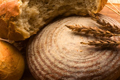 Oven-fresh loaf. A close-up of a new-baked loaf of bread with a wheat head Stock Photography